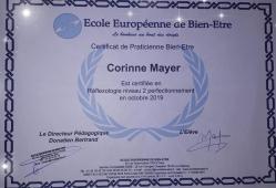 Certificat reflexologie niveau 2